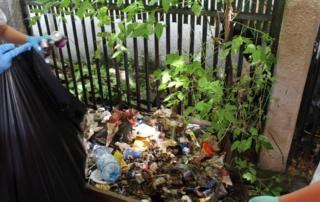 deNECREZUT 2017 - Igienizare parcul Cancicov Bacau